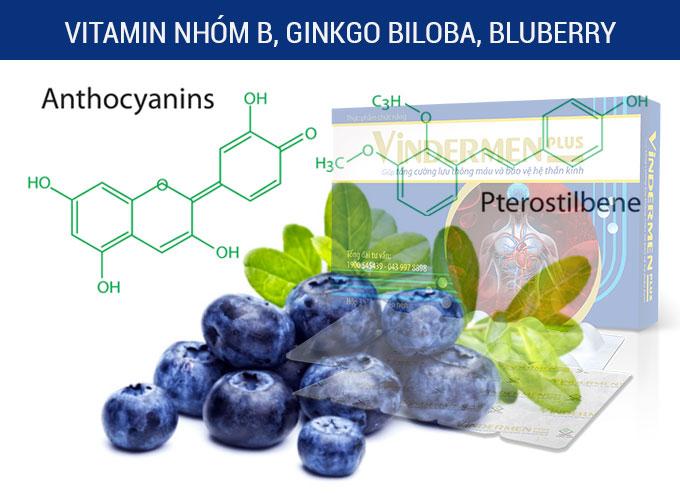 Dưỡng chất (vitamin nhóm B, Ginkgo Biloba, Bluberry) giúp chúng ta ngăn ngừa và cải thiện chứng suy giảm trí nhớ hiệu quả.