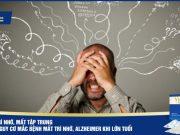 Suy giảm trí nhớ, mất tập trung làm tăng nguy cơ mắc bệnh mất trí nhớ, Alzheimer khi lớn tuổi