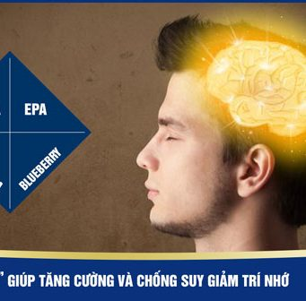 """""""Bộ tứ siêu đẳng"""" giúp tăng cường và chống suy giảm trí nhớ"""